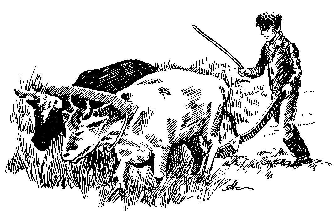 Plowing Farmer
